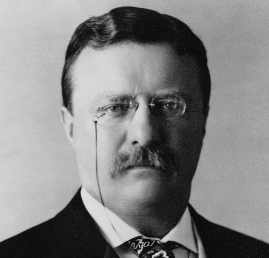 theodore-roosevelt-picture.jpg