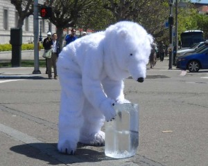polar-bear-shot-horizontal